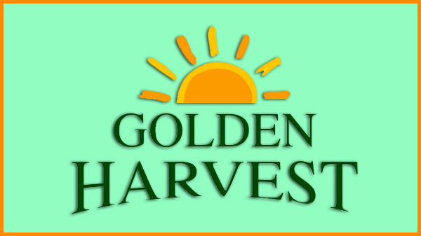 golden-hervest