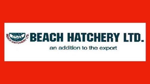 beach hatchery